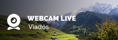 webcam-viados